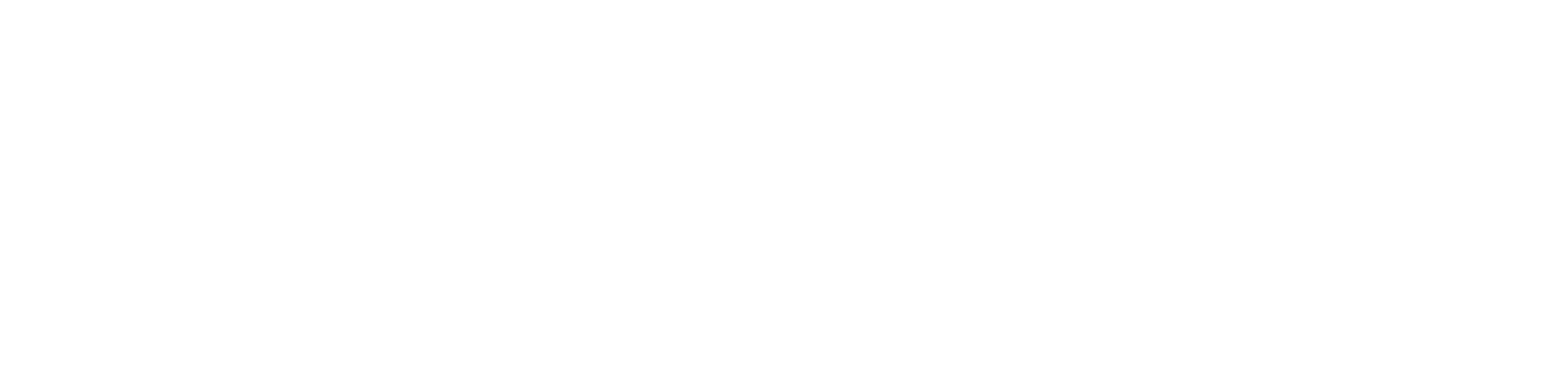 Port Agencies Rotterdam Logo